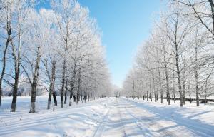 Kinh Nghiệm Du Lịch Canada Vào Mùa Đông