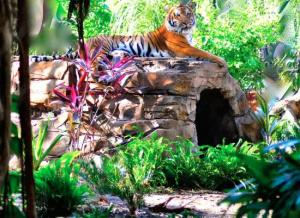 Những Địa Điểm Du Lịch Tốt Nhất Ở West Palm Beach, Florida