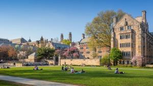 Top 10 Trường Đại Học Cao Đẳng Tốt Nhất Ở Mỹ