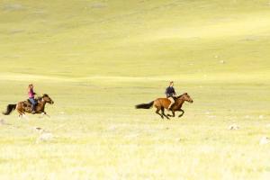 Đến Mông Cổ Thong Thả Cưỡi Ngựa Trên Thảo Nguyên Xanh