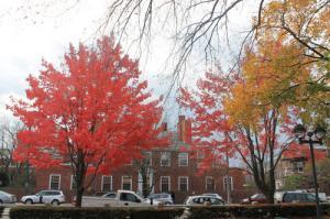 Du lịch Mỹ Ngắm Mùa Thu Tuyệt Đẹp Tại Boston