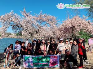 Đoàn Du Khách Du Lịch Mỹ Mùa Hoa Anh Đào Tháng 3/2019
