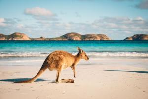 Những Lưu Ý Khi Du Lịch Úc Mà Bạn Nên Biết