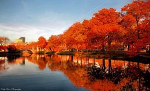 Tìm Hiểu Về Thành Phố Boston Của Nước Mỹ