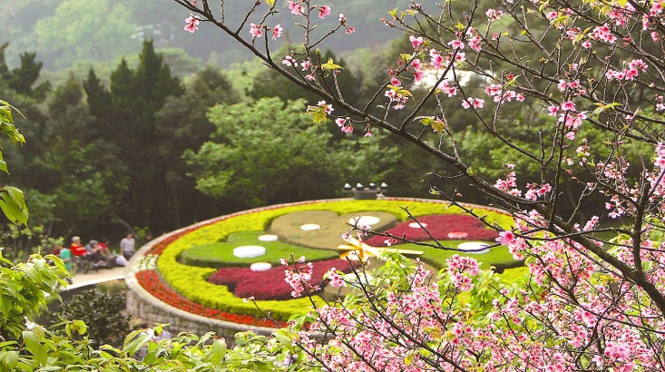 Tour Du Lịch Đài Loan 2018: Đài Bắc – Đài Trung – Cao Hùng Làng Văn hoá Cửu Tộc – Công viên Dương Minh Sơn
