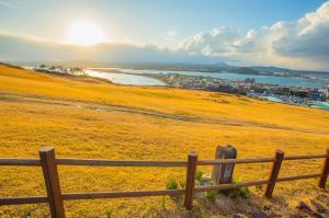 Du lịch Hàn Quốc Tháng 10,11 Mùa Lá Đỏ: Seoul - Jeju - Nami