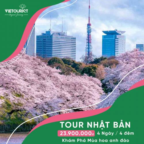 Tour Du Lịch Nhật Bản 4 Ngày 4 Đêm Mùa Hoa Anh Đào: Ibaraki– Yamanashi – Tokyo