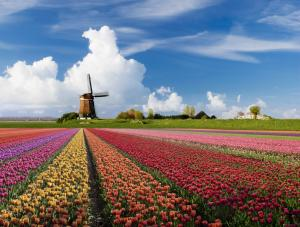 Tour Du Lịch Hà Lan Giá Rẻ 2017 Kết Hợp 6 Nước Ý - Vatican - Hà Lan - Đức - Bỉ