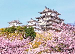 Tour Du Lịch Nhật Bản Tết Tây 7 Ngày 6 Đêm: Ibaraki - Tokyo - Yokohama