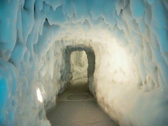 Hokkaido Ice Pavilion